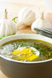 Sorrel soup. With egg and greens in a plate stock photos