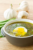 Sorrel soup. With egg and greens in a plate royalty free stock photography
