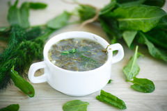 Sorrel soup. With egg and greens in a plate Stock Photo