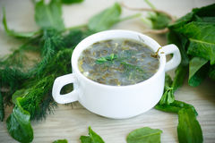 Sorrel soup. With egg and greens in a plate Stock Images