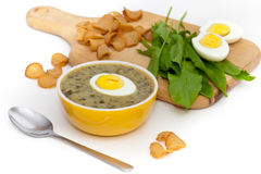 Sorrel soup. With egg and greens. Selective focus Royalty Free Stock Image