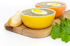 Sorrel soup. With egg and greens. Selective focus Royalty Free Stock Images