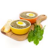 Sorrel soup. With egg and greens. Selective focus Stock Photography
