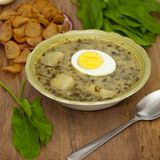 Sorrel soup. With egg and greens. Selective focus stock image