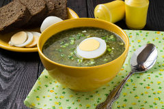 Sorrel soup with egg. Traditional russian spring sorrel soup with egg in a yellow bowl, plate with rye bread and eggs, spices on a wooden table on wooden table Royalty Free Stock Image