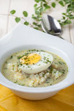 Sorrel soup with egg in white bowl. Royalty Free Stock Photo