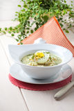 Sorrel soup with egg in white bowl. Stock Image