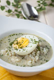 Sorrel soup with egg in white bowl. Royalty Free Stock Image