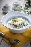 Sorrel soup with egg in white bowl. Homemade sorrel soup with egg and rice in a bowl Royalty Free Stock Image
