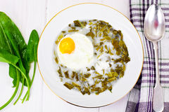 Sorrel Soup with Egg. Sorrel Soup with White Egg Studio Photo Royalty Free Stock Image