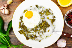Sorrel Soup with Egg. Sorrel Soup with White Egg Studio Photo Stock Image