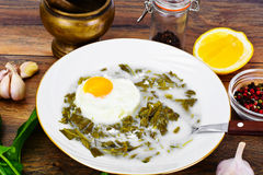 Sorrel Soup with Egg. Sorrel Soup with White Egg Studio Photo Stock Images