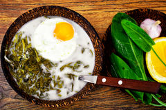 Sorrel Soup with Egg. Sorrel Soup with White Egg Studio Photo Stock Photo