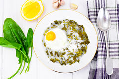 Sorrel Soup with Egg. Sorrel Soup with White Egg Studio Photo Royalty Free Stock Images