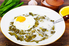 Sorrel Soup with Egg Royalty Free Stock Images