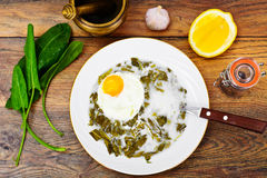Sorrel Soup with Egg. Sorrel Soup with White Egg Studio Photo Royalty Free Stock Photo