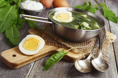 Sorrel soup with egg. On wooden table Stock Image