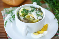 Sorrel soup. Soup with sorrel and eggs in a bowl on the table Stock Images