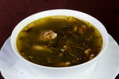Sorrel soup with meat. And herbs stock photos