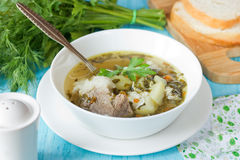 Sorrel soup with meat, potatoes, egg and greens. In bowl Stock Images