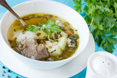 Sorrel soup with meat, potatoes, egg and greens. In bowl Royalty Free Stock Image