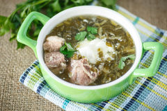 Sorrel soup. With meat and sour cream in a dish Royalty Free Stock Photos