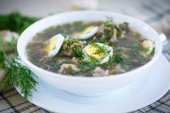 Sorrel soup with meatballs and eggs. In a bowl Royalty Free Stock Images
