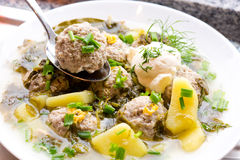 Sorrel soup with meatballs . Sorrel soup with meatballs and eggs in a bowl Stock Image