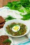 Sorrel soup Stock Image