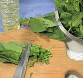 Sorrel spring. Cutting sorrel salad on a wooden board stock image