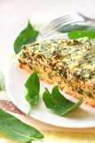 Sorrel tart with goat cheese. Piece of sorrel tart with goat cheese Royalty Free Stock Photography