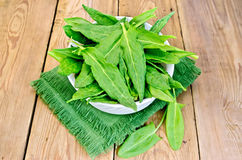 Sorrel in a white bowl. Fresh green sorrel in a white bowl on a napkin on the background of wooden boards Stock Photos