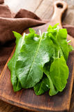 Sorrel. On a wooden board Stock Photos