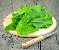 Sorrel on a wooden table. Sorrel on the cutting board on a wooden table Royalty Free Stock Photo