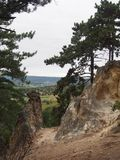 Sorrento cliff at Budaors. Sorrento cliff with pine-woods at Budaors, Hungary royalty free stock photos