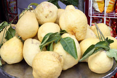 Sorrento lemons. Big Sorrento lemons with leaves Royalty Free Stock Photos