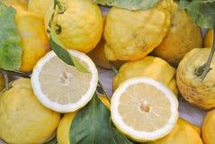 Sorrento lemons. Close up of Sorrento lemons Stock Photos