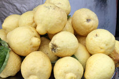 Sorrento lemons. At fruit market Stock Photos