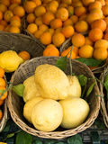 Sorrento lemons on the market Royalty Free Stock Images