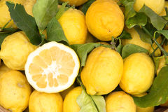 Sorrento lemons on the market. Sorrento lemons  on the market Stock Photos