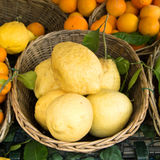 Sorrento lemons on the market stock photo