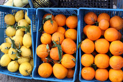 Sorrento lemons and oranges. In baskets royalty free stock photos