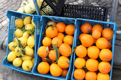 Sorrento lemons and oranges. At fruit market royalty free stock image