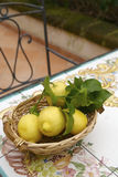 Sorrento's lemons. Basket with lemons in Sorrento coast royalty free stock photography