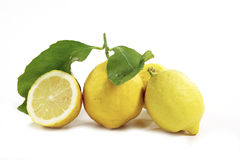 Sorrento's lemons. Isolated on white Stock Images