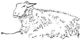 Sorrir-carneiro-esboço ilustração royalty free