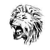 Sorrir forçadamente aberto da boca da cabeça do leão do vetor do esboço Imagem de Stock Royalty Free