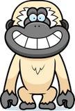Sorrir forçadamente de Gibbon dos desenhos animados Foto de Stock Royalty Free