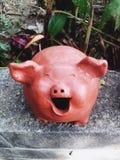 Sorriso del maiale Fotografia Stock Libera da Diritti