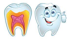 Sorriso e dentes do dente na seção ilustração stock